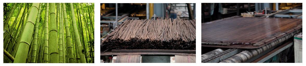 Dasso Bamboo Process